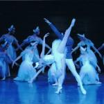 今田バレエ研究所2011年発表会_白鳥の湖第2幕より